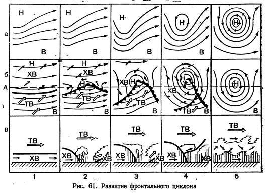 стадии окклюзии — циклон